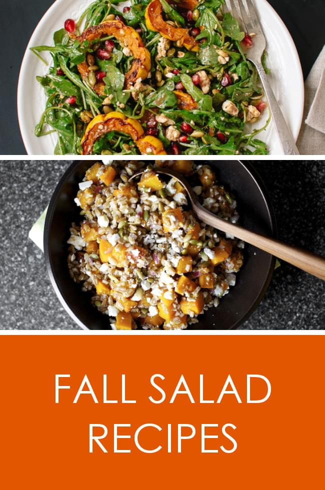 Delicious fall salad recipes