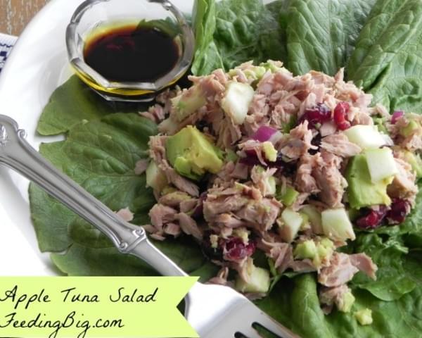 Apple tuna salad recipe for Tuna fish salad calories
