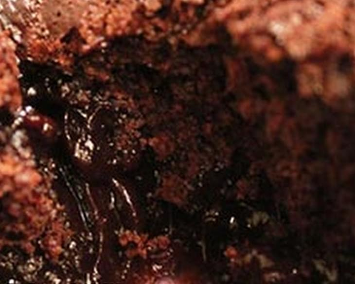Weight Watchers Chocolate Lava Cake Recipe
