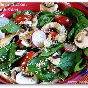 Mandarin Chicken Spinach Salad