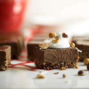 Double Chocolate Crispy Frozen Dessert Bars