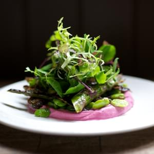 Roasted Ruby Beetroot Ricotta with Pan-fried Asparagus and Broad Bean Salad