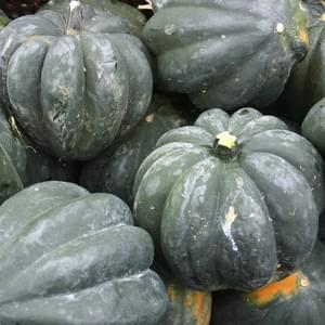Roasted Acorn Squash Stuffed with Mushroom and Sage – Veggie Dish