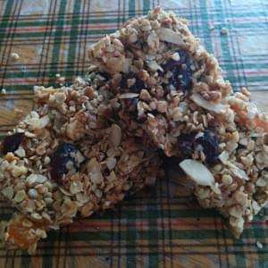Tropical Granola Bars (vegan)