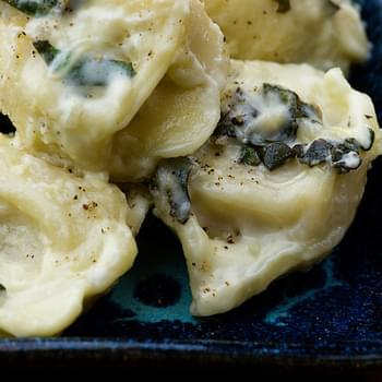 Tortellini with Basil Cream Sauce