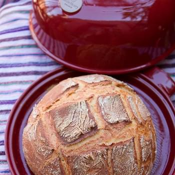 Rustic White Bread from a Bread Cloche