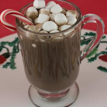 CrockPot Peppermint Hot Chocolate/ Peppermint Mocha