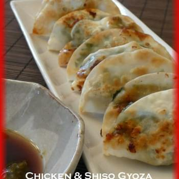 Chicken Gyoza Recipe with Yuzu Kosho