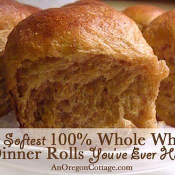 Soft 100% Whole Wheat Dinner Rolls