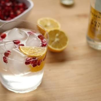 Very Good Gin and Tonic