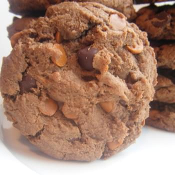 Double Chocolate Fudge Cinnamon Cookies