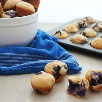 Mini Protein Blueberry Muffins