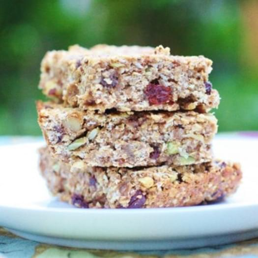 Vegan Oatmeal Raisin Snack Bars (vegan, gluten free with appropriate choice of grains, soy free)
