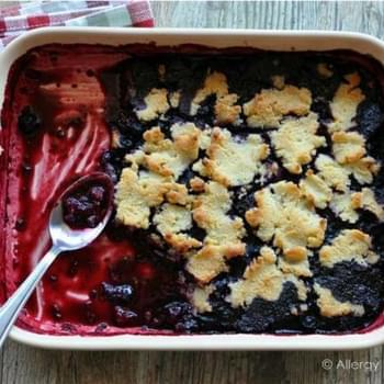 Sugar Free Triple Berry Cobbler (Grain & Nut Free)